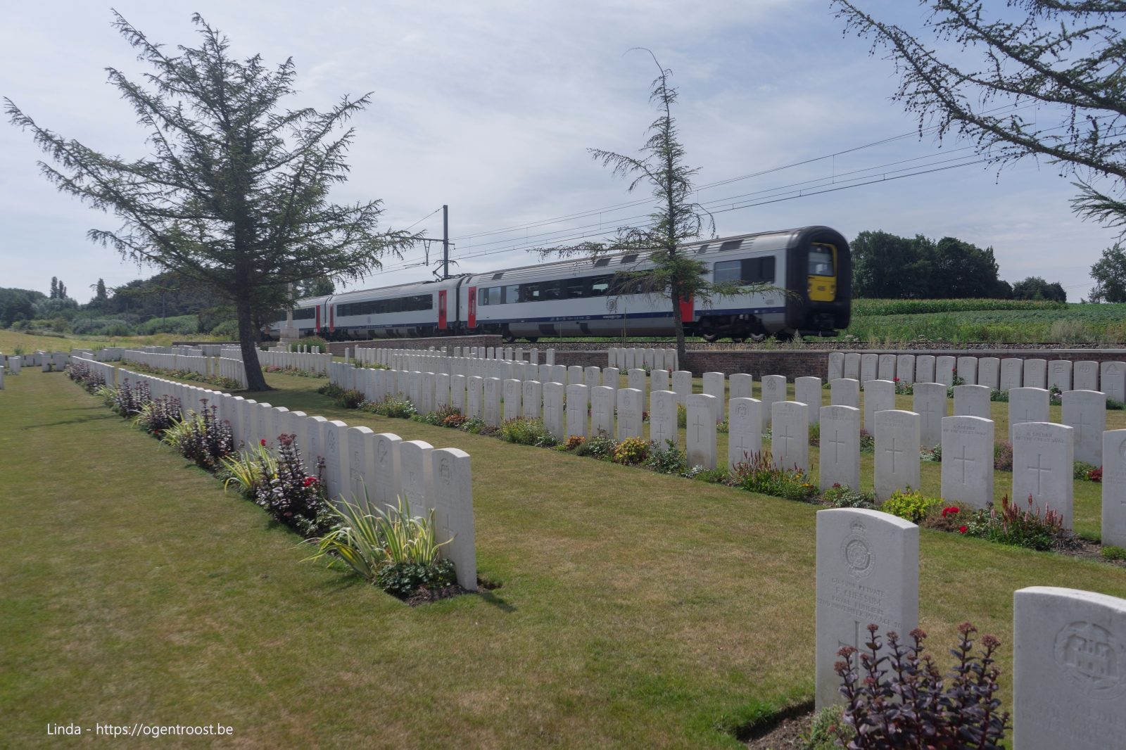 Larch Wood (Railway Cutting) Cemetery