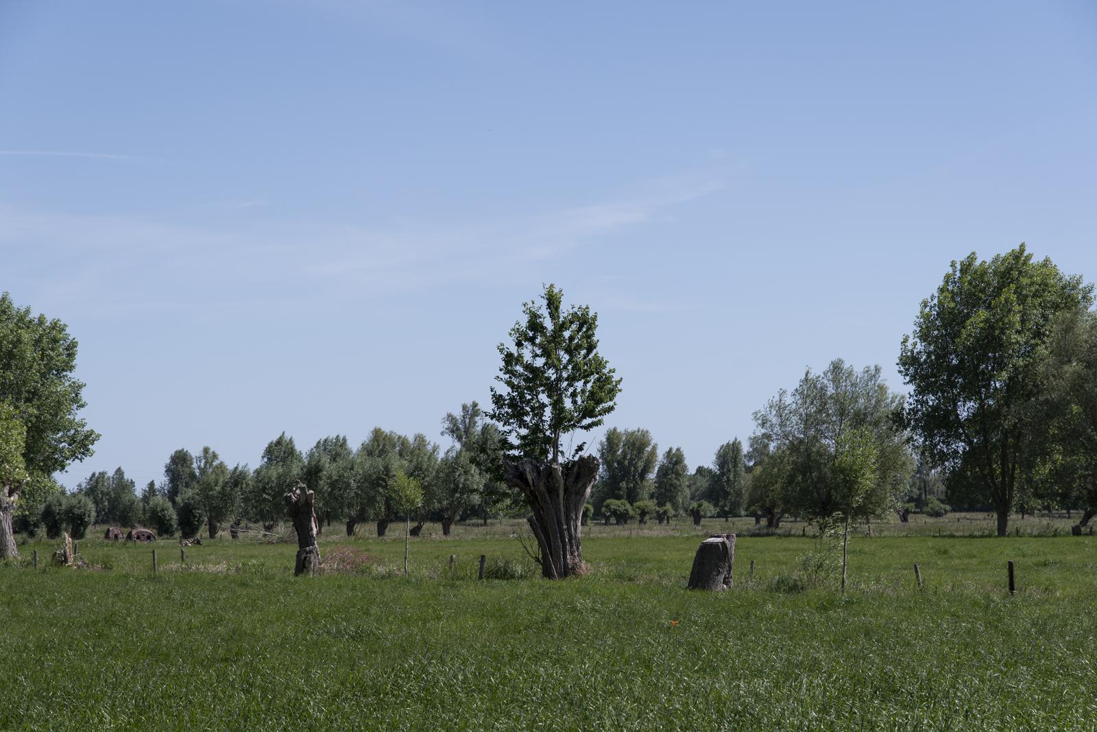 Vallei van de Oude Kale